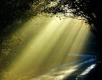 Hacia la luz (II)