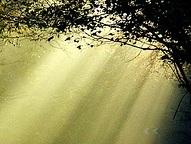 Hacia la luz (III)